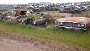 junkyard in 2016